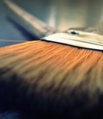 brush-57527-940x545-662x383